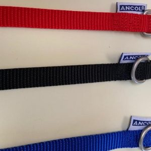 Ancol buckle nylon collars