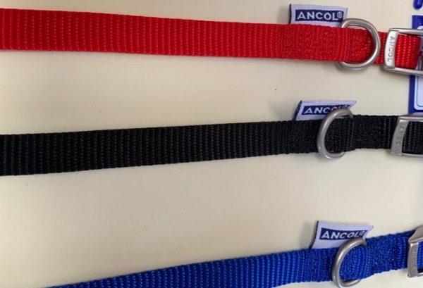 Ancol buckle nylon collars