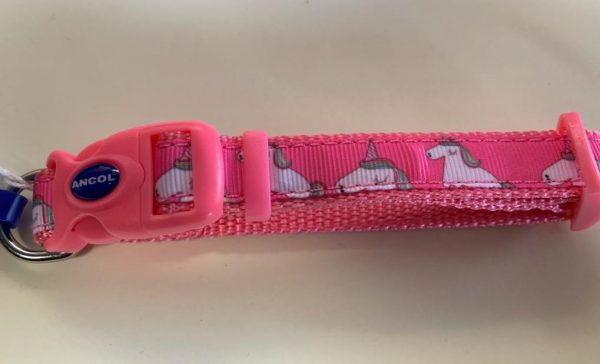 Ancol adjustable dog collar