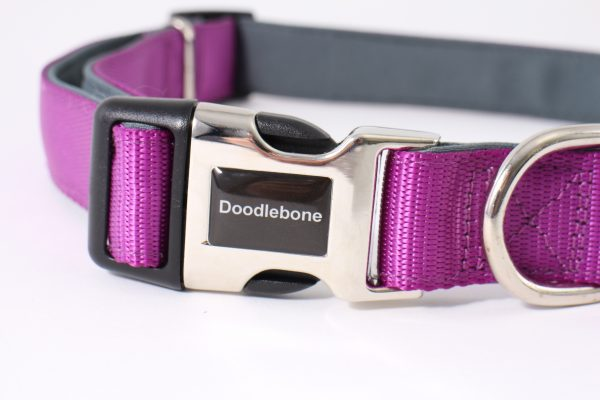 Doodlebone padded collar